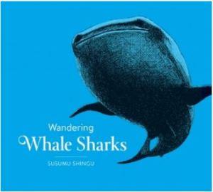 Shingu Wandering Whale Sharks