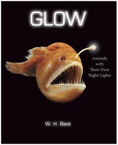 beck-glow