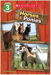 perkins-horses-and-ponies