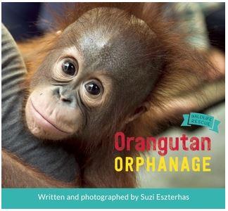 eszterhas-orangutan-orphanage